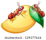 illustration of a mango with...   Shutterstock .eps vector #129277616