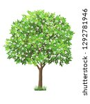 vector realistic tree with... | Shutterstock .eps vector #1292781946