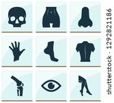 physique icons set with leg ... | Shutterstock .eps vector #1292821186