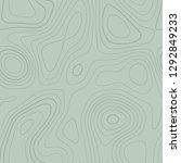 topographic map. admirable... | Shutterstock .eps vector #1292849233