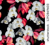 Floral Pattern White Flowers Orchids - Fine Art prints