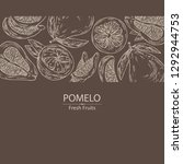 background with  pomelo and... | Shutterstock .eps vector #1292944753