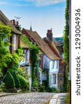 charming houses in beautiful ...   Shutterstock . vector #1293004936
