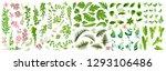 vector designer elements set... | Shutterstock .eps vector #1293106486