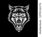 dire wolf head vector...   Shutterstock .eps vector #1293116176