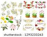 flower isolated on white... | Shutterstock .eps vector #1293233263