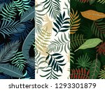 set of three tropical... | Shutterstock .eps vector #1293301879
