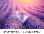Woman In Lavender Flowers Fiel...