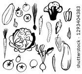 hand drawn vegetables on white... | Shutterstock .eps vector #1293404383