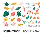 big set of bright tropical... | Shutterstock .eps vector #1293419569