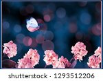 floral summer and spring ...   Shutterstock . vector #1293512206