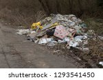 garbage in forest. people... | Shutterstock . vector #1293541450