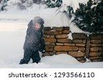 little cute boy is having fun... | Shutterstock . vector #1293566110