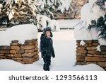 little cute boy is having fun... | Shutterstock . vector #1293566113