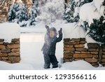 little cute boy is having fun... | Shutterstock . vector #1293566116