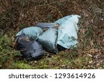 garbage in forest. people... | Shutterstock . vector #1293614926