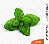 3d realistic isolated vector...   Shutterstock .eps vector #1293661036