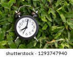 black alarm clock on green... | Shutterstock . vector #1293747940