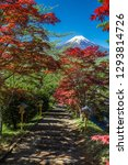 fuji mountain background and... | Shutterstock . vector #1293814726