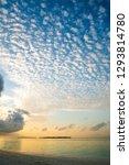 seascape background  cloud... | Shutterstock . vector #1293814780