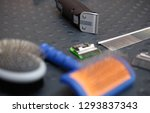 professional pet groomer... | Shutterstock . vector #1293837343