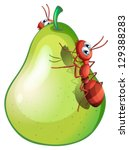 Illustration Of A Pear With Two ...