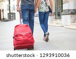 rear view of young tourist... | Shutterstock . vector #1293910036