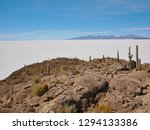 the incredible salt flat of... | Shutterstock . vector #1294133386