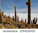 the incredible salt flat of... | Shutterstock . vector #1294133410