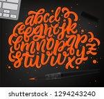 vector hand drawn lettering... | Shutterstock .eps vector #1294243240