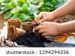 hand planting sapling to... | Shutterstock . vector #1294294336