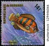 Small photo of REPUBLIC OF BURUNDI - CIRCA 1975: A stamp printed by Burundi shows the fish Polycentropsis abbreviata, circa 1975