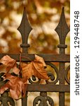 Leaves on the iron fence - stock photo