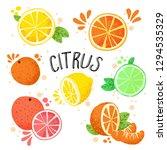 hand draw vector illustration... | Shutterstock .eps vector #1294535329