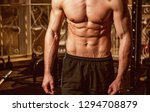 male torso  muscular macho with ... | Shutterstock . vector #1294708879