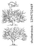 hand drawn tree isolated on... | Shutterstock .eps vector #1294752469