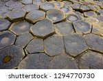 close up view of natural... | Shutterstock . vector #1294770730