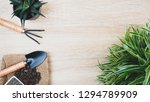 plant and garden tools on wood... | Shutterstock . vector #1294789909