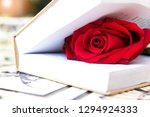 rose on the book. love concept. | Shutterstock . vector #1294924333