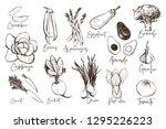 black and white vegetables set... | Shutterstock .eps vector #1295226223