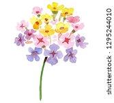 Pink Yellow Lantana Floral...