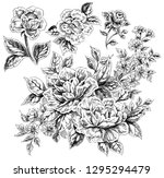 hand drawn flowers and leaves | Shutterstock . vector #1295294479