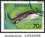 Small photo of TANZANIA - CIRCA 1993: A stamp printed in Tanzania shows African angelshark, Squatina africana, circa 1993
