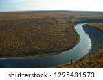 In Autumn  Taiga In Siberia....