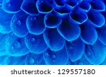 abstract petals of a flower... | Shutterstock . vector #129557180