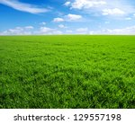 Green Grass Field And Bright...