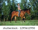 Beautiful Cowgirl Bareback Rid...