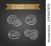 walnut. set of fresh fruits ... | Shutterstock .eps vector #1295647870