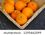 Sumo Citrus Giant Mandarin...