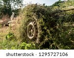 trailer and wheel reclaimed by... | Shutterstock . vector #1295727106